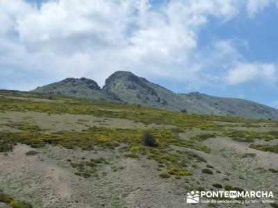 Ruta senderismo Peñalara - Parque Natural de Peñalara; grupos de senderismo en madrid capital